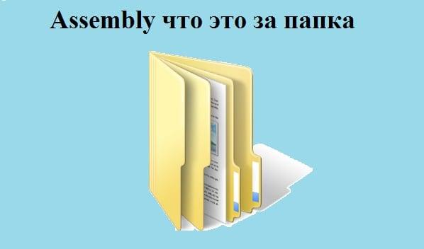 Заставка что за папка Assembly