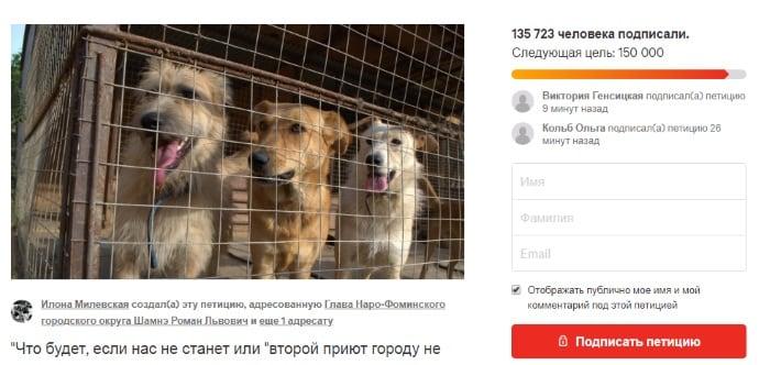 Страница петиции