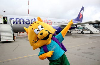 Ростовая кукла кота на фоне самолета Смартавиа