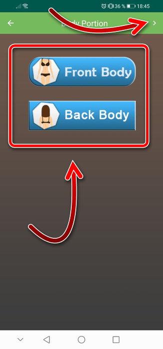 Задняя и передняя части тела